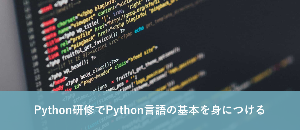Python研修