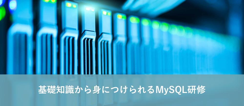 MySQL研修